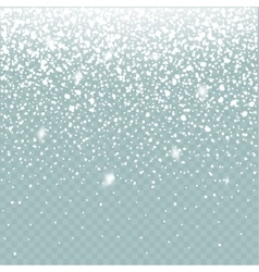 snow effect isolated falling winter vector image