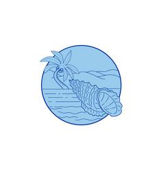 Giant frog shell beach palm tree circle retro vector