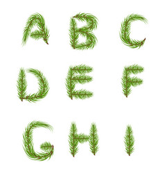 spruce branches in the form of letters vector image