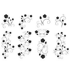 set of decorative floral elements vector image
