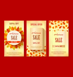 autumn sale banners season leaf card design vector image