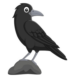 cartoon crow standing in stone on white background vector image
