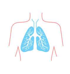 Icon of the human lungs vector