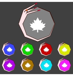 Maple leaf icon Set colourful buttons vector image