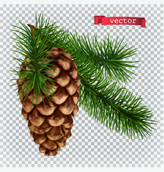 pine cone christmas decoration 3d realistic icon vector image