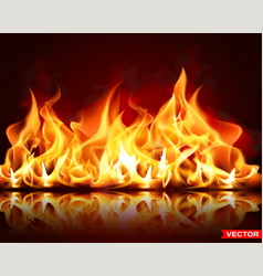 Realistic burning fire flame bright element vector