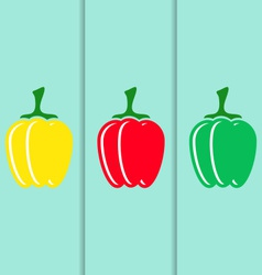 Sweet pepper icons vector image