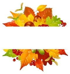 autumn frame with fall leaf vector image