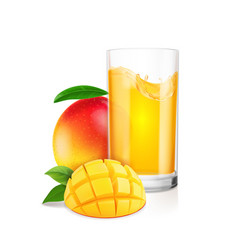 fresh mango fruit and juice vector image