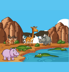 Many wild animals by pond vector