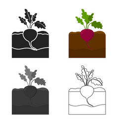 Radish icon cartoon single plant icon from the vector