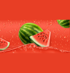 Red drops watermelon 3d realistic vector