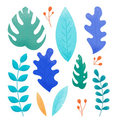 set concept botanical graphic elements isolated vector image