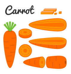 Set of fruit and vegetable carrot vector