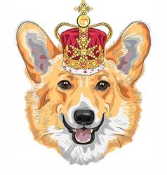Dog pembroke welsh corgi breed in gold crown vector