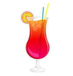 long summer cocktail in glass with ice orange vector image