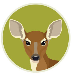 A fawn in a round frame vector