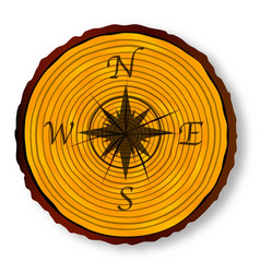 Compass face on timber section vector
