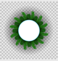 green fir circle frame vector image