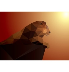 Lion polygonal geometric pattern design vector image