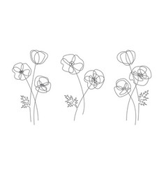 Poppy flower in line style modern line art vector