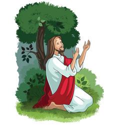 jesus agony in the garden vector image