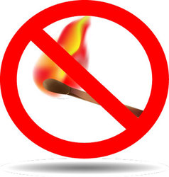 Sign of the fire ban vector image vector image