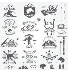 Ski club vector image vector image