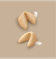 Chinese fortune cookies vector