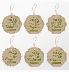 organic cardboard labels and tags in retro style vector image