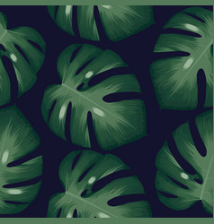 palm leaves tropical pattern background vector image