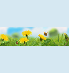 spring landscape green grass and yellow vector image
