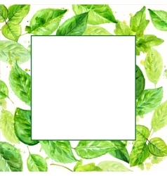 square frame made of various leaves in watercolor vector image vector image
