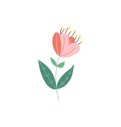flat abstract tulip flower icon vector image