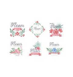 Flower shop logo templates set florist badges vector