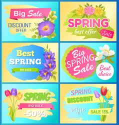 Seasonal offer spring sale advertisement flowers vector