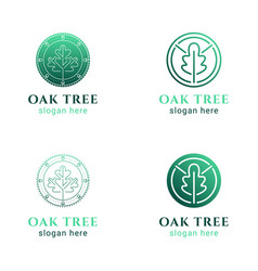 set of simple line iconsround circle oak tree vector image