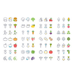 set of vegetables on white vector image