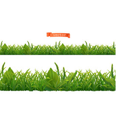spring green grass 3d realistic seamless pattern vector image