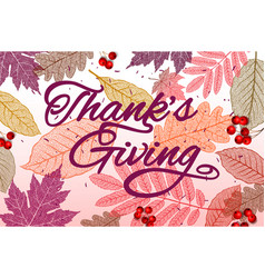 Thanksgiving holiday banner with congratulation vector