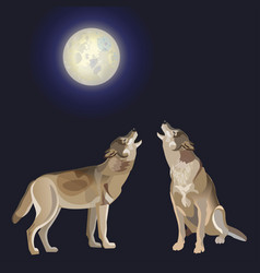 Howling gray wolves vector