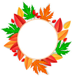 round frame autumn leaves vector image