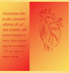 Two section poster about human heart vector