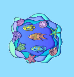 With fishes and shels vector