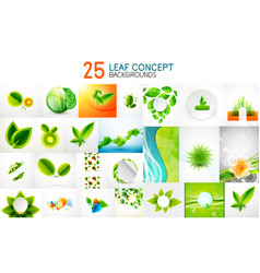 mega collection of green concepts leaf vector image vector image