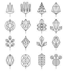 Flower and Tree Abstract Icons vector image