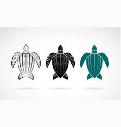 Gooseberry turtle design on white background sea vector