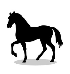horse farm mammal black silhouette animal vector image