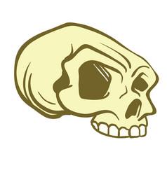 Skull6 vector