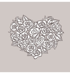 Valentine day heart made of roses Ink drawing vector image